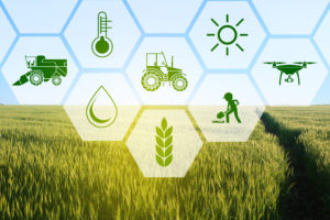 Agritech in Africa: How Blockchain Can Help Revolutionize Agriculture